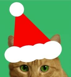 Christmas Tom 2